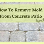 Best Ways To Clean Mold From Concrete Patio-Simple Easy Steps