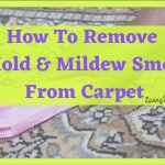 5 Easy Steps To Get Rid Off Stinky Mildew Smell Out Of Carpet