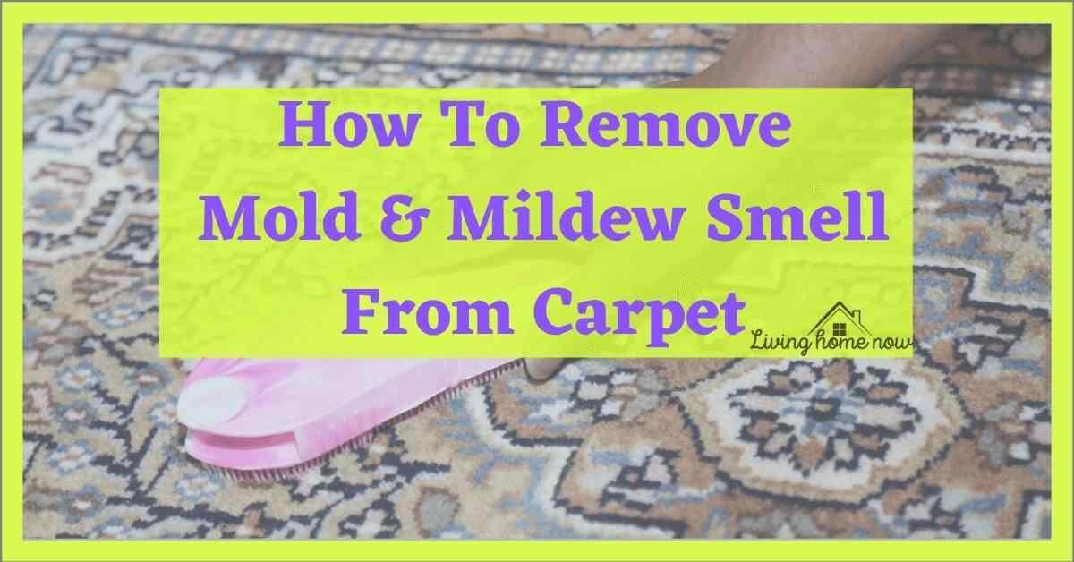 mildew smell in carpet