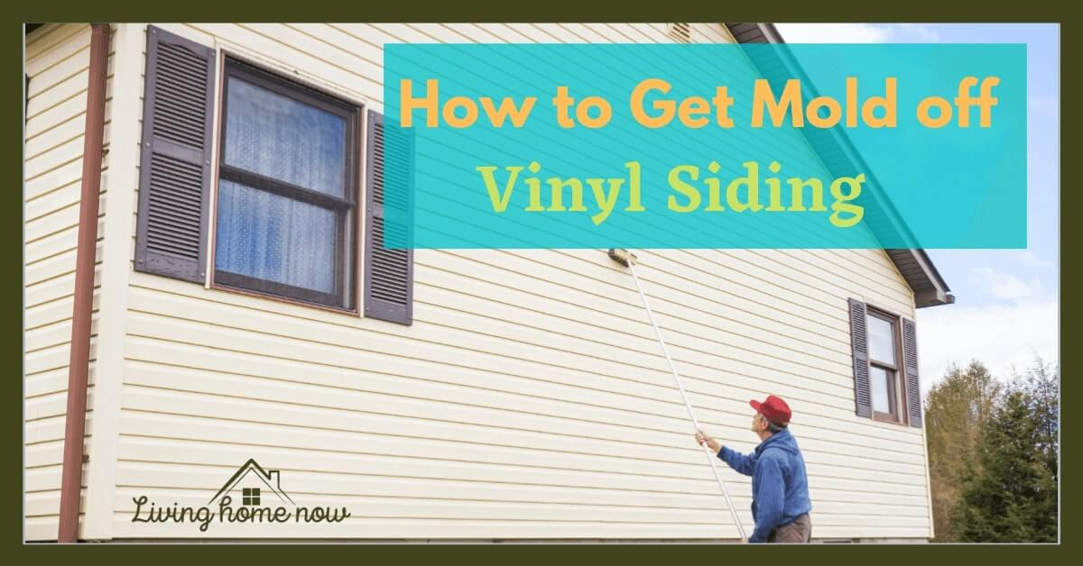 how to clean mold off vinyl siding