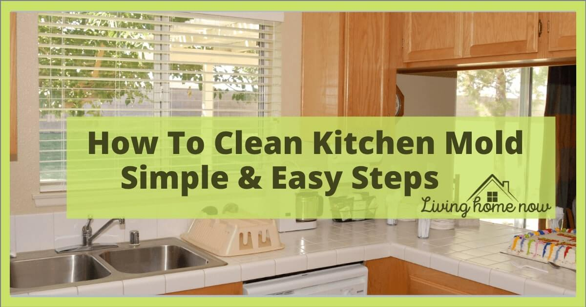 How to clean kitchen mold