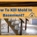 How To Get Rid of Mold in Basement-Expert tips & advise