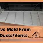 9 Types of Mold in Air Ducts & How To Remove Them Like a Professional