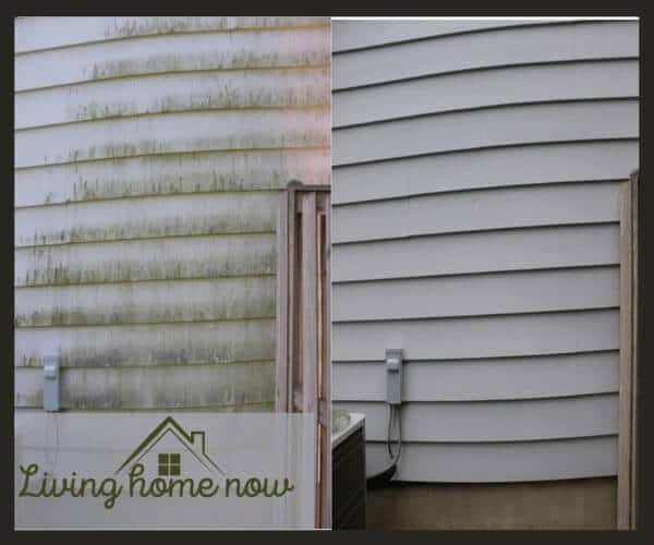 Pressure wash vinyl siding mold cleaning