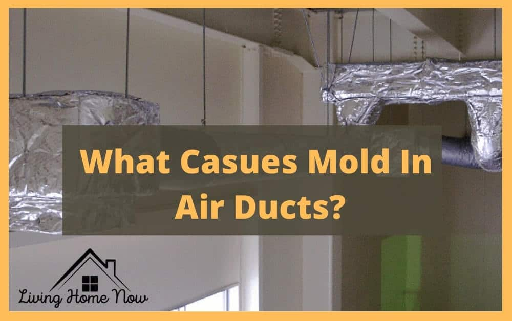 What Causes Mold In Air Ducts