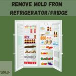 Clean Mold from Refrigerator-9 Easy Steps To kill Mold