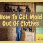 8 Ways To Get Mold Out of Clothes-Mold Removal Tips